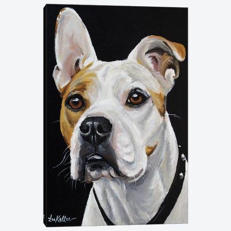 American Bulldog Canvas Print #HHS267} by Hippie Hound Studios Canvas Art Print