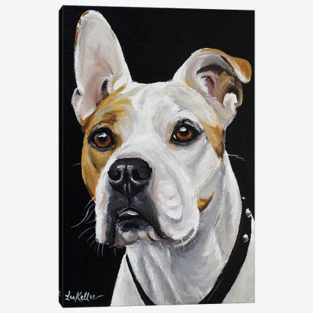 American Bulldog Canvas Print #HHS267} by Hippie Hound Studios Canvas Art Print