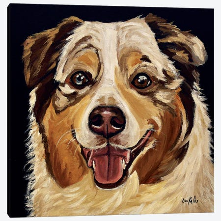 Austrailian Shepherd Canvas Print #HHS268} by Hippie Hound Studios Canvas Artwork