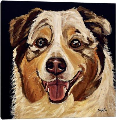 Austrailian Shepherd Canvas Art Print