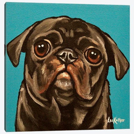 Black Pug On Teal Canvas Print #HHS270} by Hippie Hound Studios Canvas Art Print