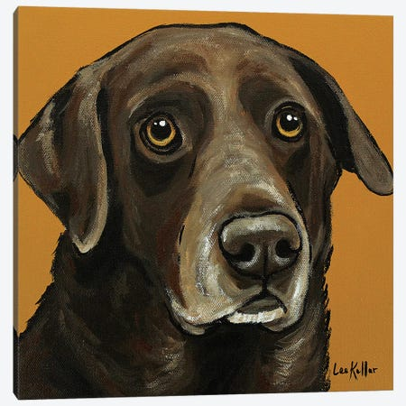 Chocolate Lab On Gold Canvas Print #HHS273} by Hippie Hound Studios Canvas Print