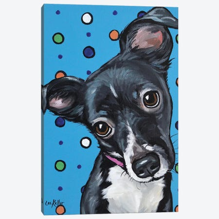 Cute Mix Breed Puppy Polka Dots Canvas Print #HHS279} by Hippie Hound Studios Art Print