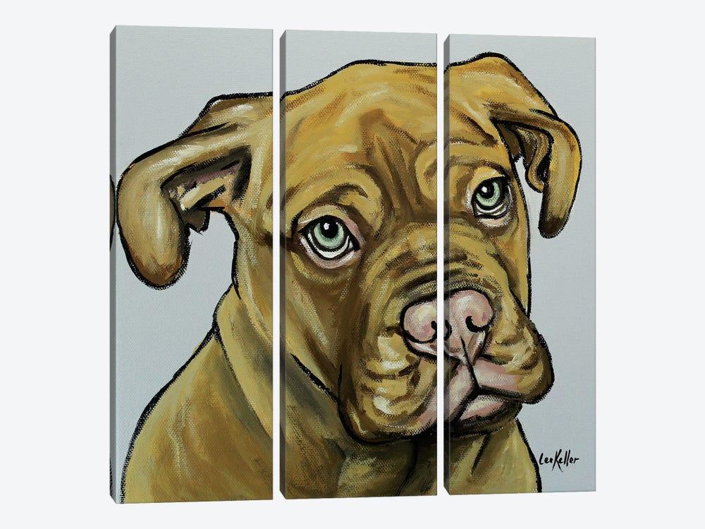 French Mastiff by Hippie Hound Studios 3-piece Canvas Artwork
