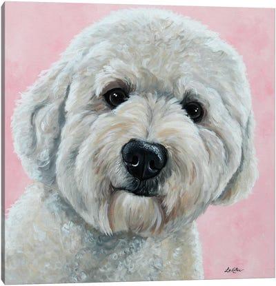 Hank The Goldendoodle Canvas Art Print