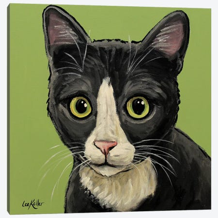 Gray Tuxedo Cat Canvas Print #HHS291} by Hippie Hound Studios Canvas Print
