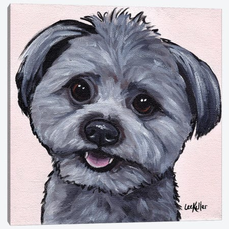 Havanese Mix Canvas Print #HHS292} by Hippie Hound Studios Art Print
