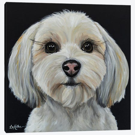 Havanese On Black Canvas Print #HHS293} by Hippie Hound Studios Art Print
