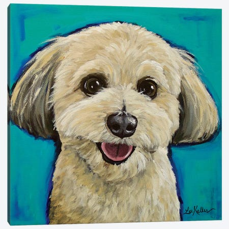 Havanese On Teal Canvas Print #HHS294} by Hippie Hound Studios Canvas Art