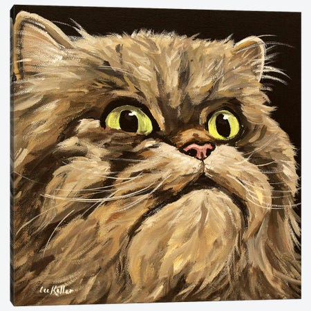 Main Coon Cat Canvas Print #HHS296} by Hippie Hound Studios Canvas Artwork