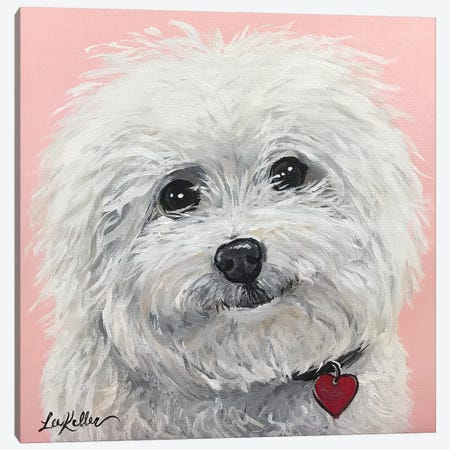 Bichon Frise Canvas Print #HHS2} by Hippie Hound Studios Canvas Artwork