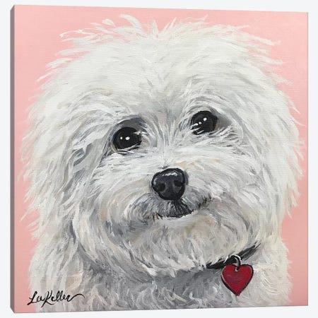 Bichon Frise Canvas Print #HHS2} by Hippie Hound Studios Canvas Artwork