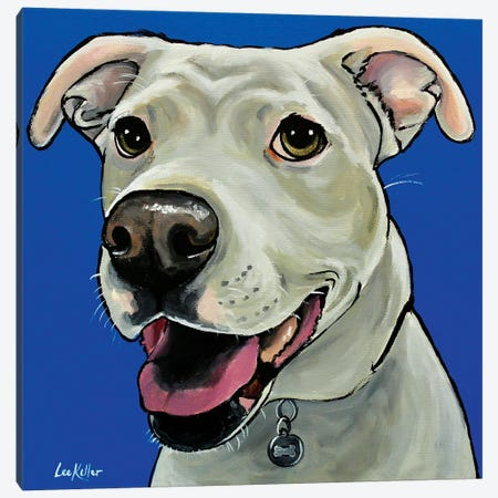 Pit Bull On Royal Blue 3-Piece Canvas #HHS301} by Hippie Hound Studios Canvas Print