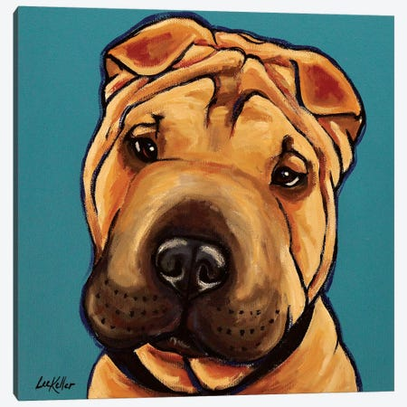Shar Pei Canvas Print #HHS306} by Hippie Hound Studios Canvas Wall Art