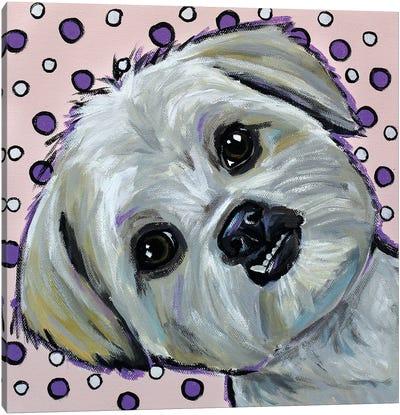 Shih Tzu On Polka Dots Canvas Art Print