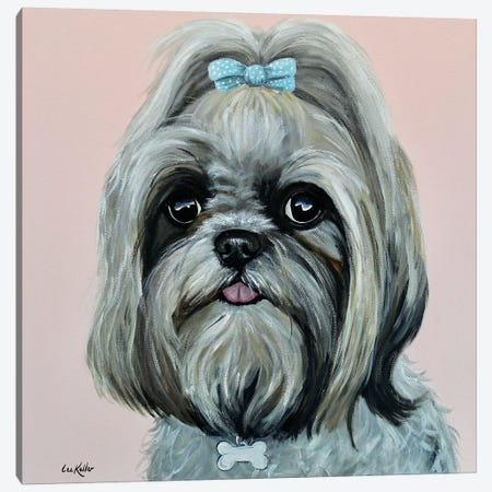 Bella The Shih Tzu I Canvas Print #HHS309} by Hippie Hound Studios Art Print