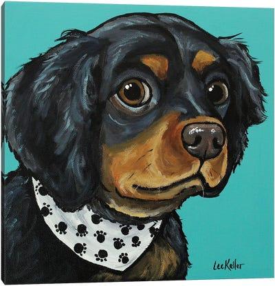 Spaniel With Bandana Canvas Art Print