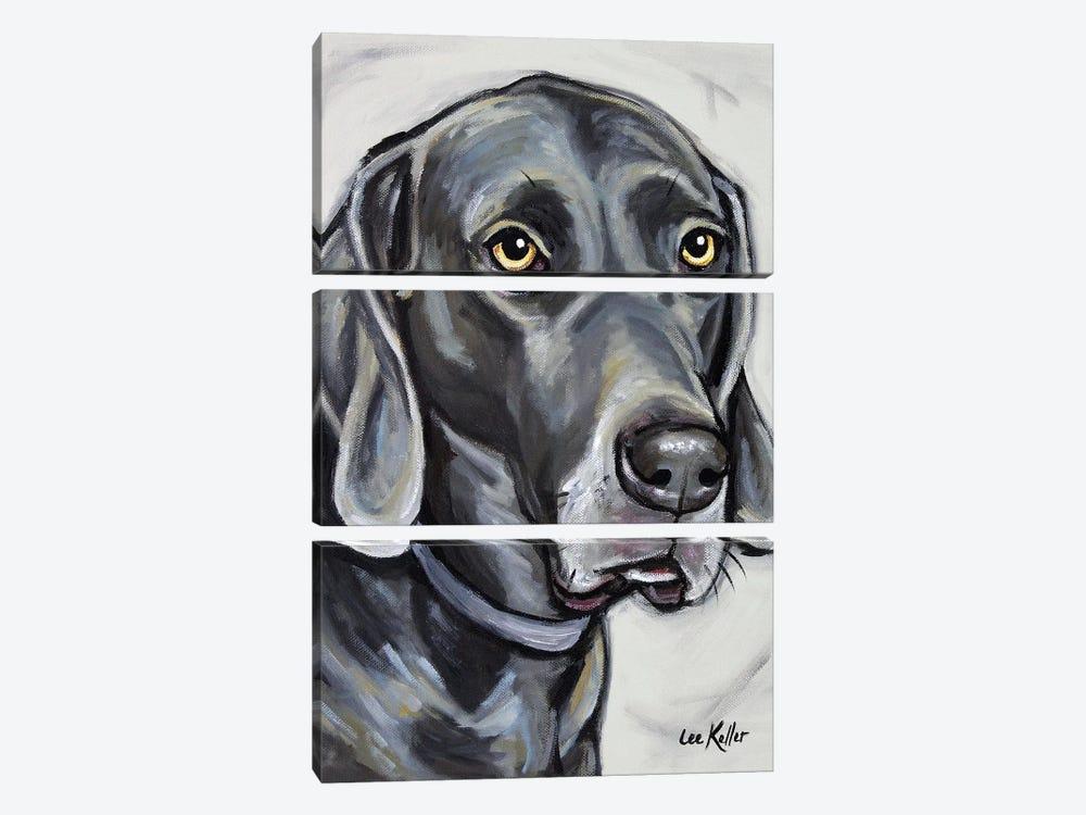 Weimeraner by Hippie Hound Studios 3-piece Canvas Art Print