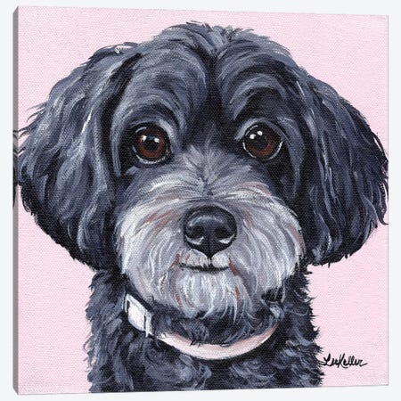 Yorkiepoo On Pink Canvas Print #HHS315} by Hippie Hound Studios Canvas Print