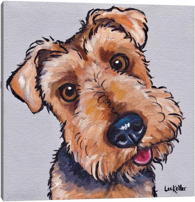 Levi The Airedale Terrier  Canvas Art Print