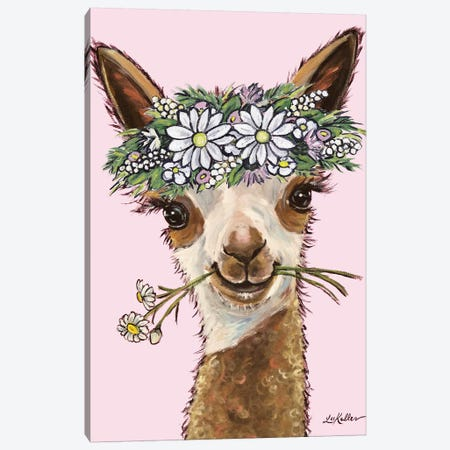 Rosie The Alpaca With Daisies On Pink Canvas Print #HHS320} by Hippie Hound Studios Canvas Print