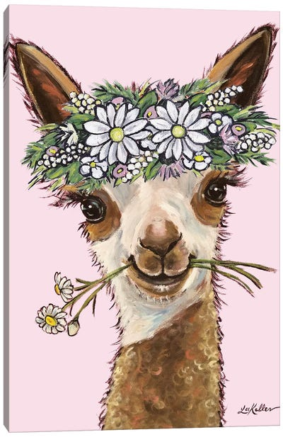 Rosie The Alpaca With Daisies On Pink Canvas Art Print