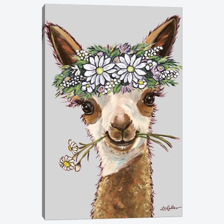 Rosie Alpaca With Daisies On Gray Canvas Print #HHS321} by Hippie Hound Studios Canvas Art Print