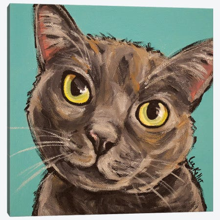 Munch The Gray Cat  Canvas Print #HHS328} by Hippie Hound Studios Canvas Print