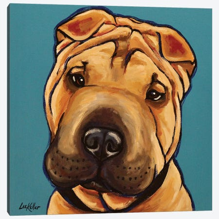 Shar Pei Canvas Print #HHS337} by Hippie Hound Studios Canvas Print