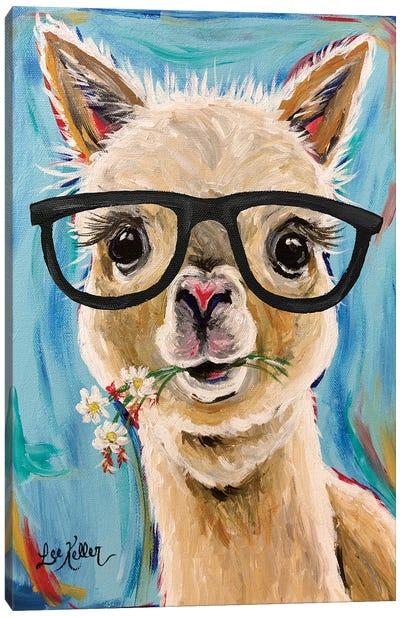 Alpaca Glasses  Canvas Art Print