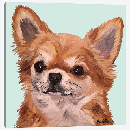 Baby Bear Chihuahua Canvas Print #HHS341} by Hippie Hound Studios Art Print