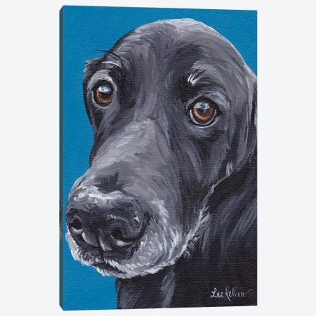 Black Lab Arlo Canvas Print #HHS344} by Hippie Hound Studios Canvas Artwork