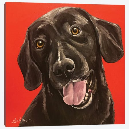 Black Lab On Orange Canvas Print #HHS346} by Hippie Hound Studios Canvas Artwork