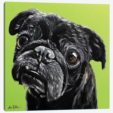 Black Pug Canvas Print #HHS348} by Hippie Hound Studios Canvas Print