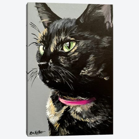 Black Tortiseshell Cat Canvas Print #HHS350} by Hippie Hound Studios Canvas Artwork