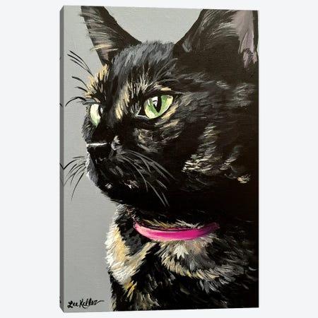 Black Tortiseshell Cat Canvas Print #HHS350} by Hippie Hound Studios Canvas Artwork
