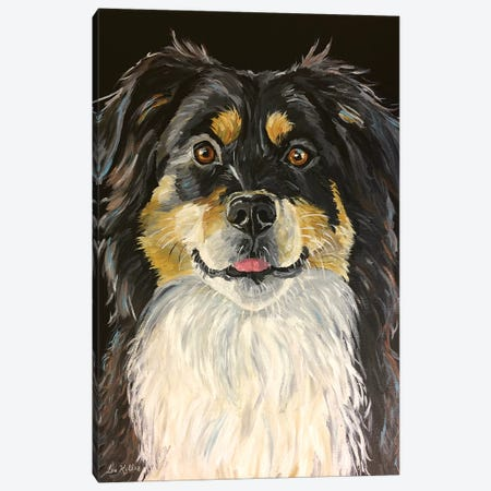 Border Collie Emily Canvas Print #HHS351} by Hippie Hound Studios Canvas Art