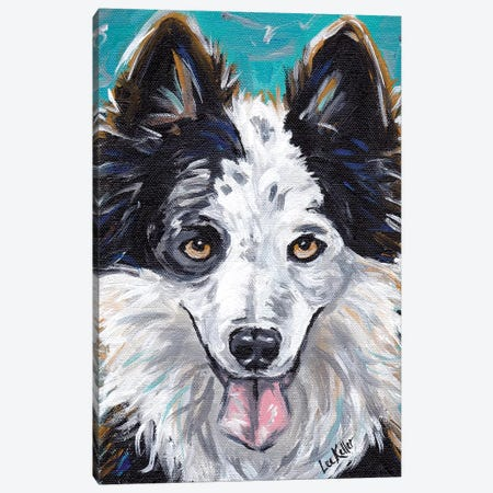Border Collie Expressive Canvas Print #HHS352} by Hippie Hound Studios Canvas Art