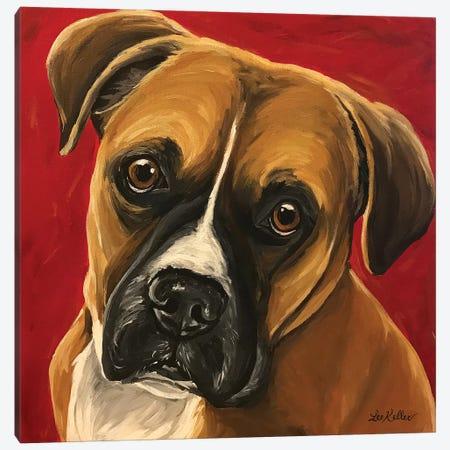 Boxer Walter Lauren Canvas Print #HHS357} by Hippie Hound Studios Canvas Art Print