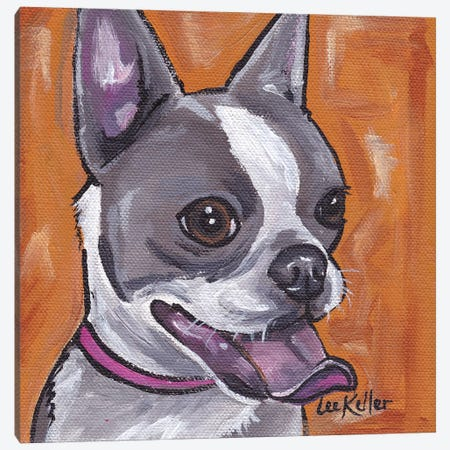 Frenchie (French Bulldog) Canvas Print #HHS35} by Hippie Hound Studios Canvas Art