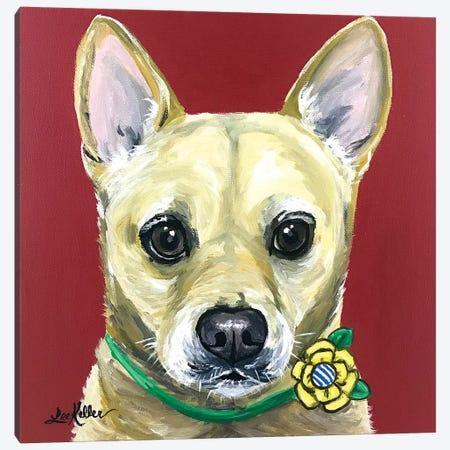Carolina Dog Canvas Print #HHS361} by Hippie Hound Studios Canvas Art Print