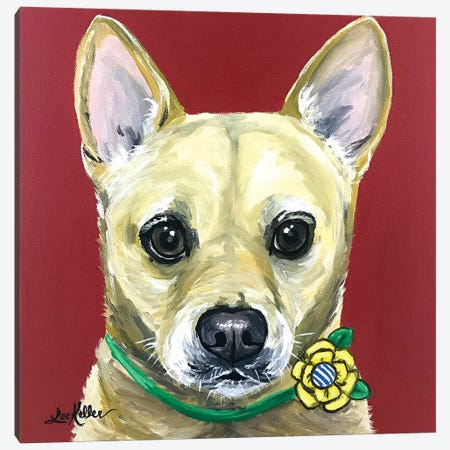 Carolina Dog Canvas Print #HHS361} by Hippie Hound Studios Canvas Art Print