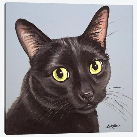 Cat Black Chloe 3-Piece Canvas #HHS362} by Hippie Hound Studios Canvas Print