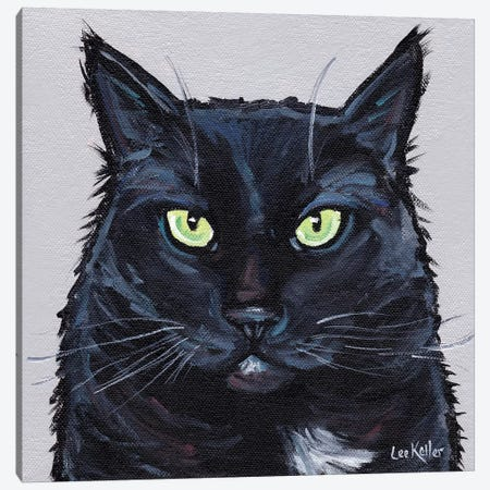 Cat Sassy Canvas Print #HHS365} by Hippie Hound Studios Canvas Artwork