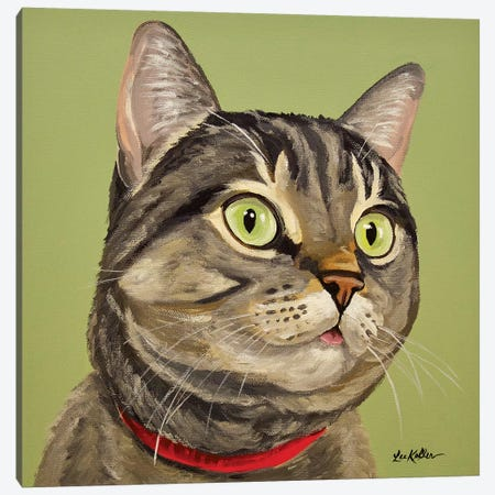 Cat Tabby Penny Canvas Print #HHS366} by Hippie Hound Studios Canvas Wall Art