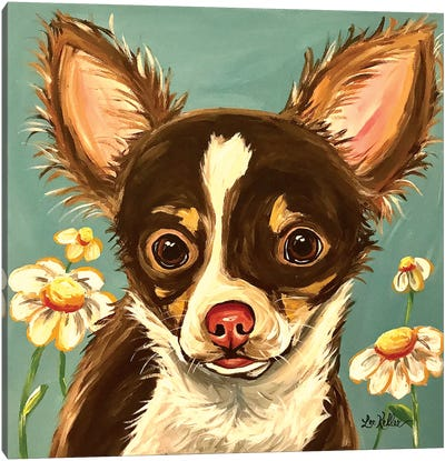Chihuahua Gizmo Canvas Art Print