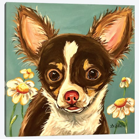 Chihuahua Gizmo Canvas Print #HHS371} by Hippie Hound Studios Canvas Artwork