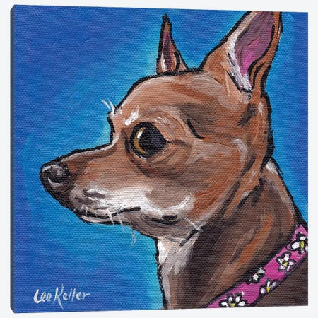 Chihuahua On Blue Canvas Print #HHS372} by Hippie Hound Studios Canvas Artwork