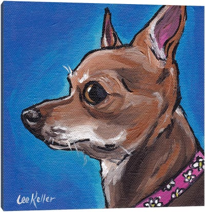 Chihuahua On Blue Canvas Art Print