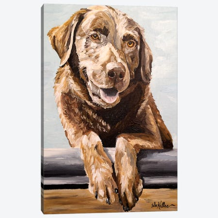 Chocolate Lab Betsy Canvas Print #HHS376} by Hippie Hound Studios Canvas Print